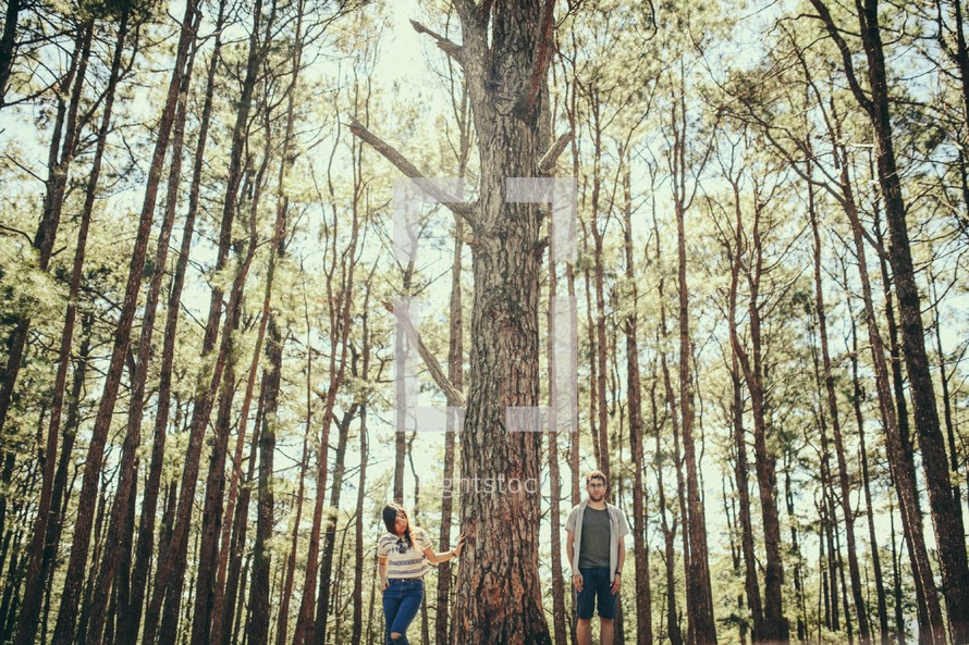 A young couple standing in a forest beside a huge tree.