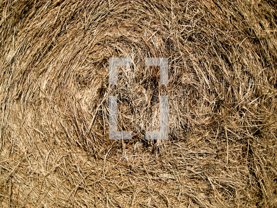 A closeup of a bale of hay