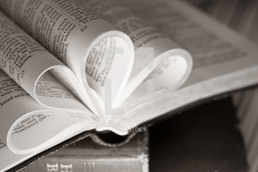pages of a Bible folded in the shape of a heart