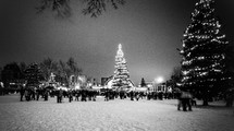 crowded gathered in a snow covered park for a tree lighting