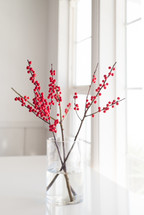 red berries on a twig in a window sill