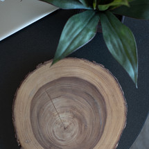 wood, tree rings, leaves, desk, house plant, laptop, desk