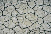 parched clay soil