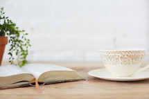 house plant, open Bible, and teacup on a saucer