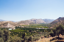 view of a vineyard in a valley
