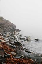 fog over a lake shore