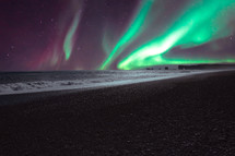 aurora borealis over a shore