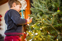 a boy decorating a Christmas tree