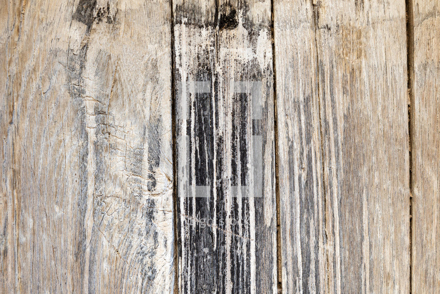 Wood texture background. Surface of old knotted wood with nature color, texture and pattern.