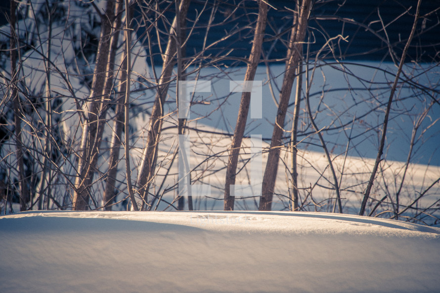 deep snow bank with trees in background