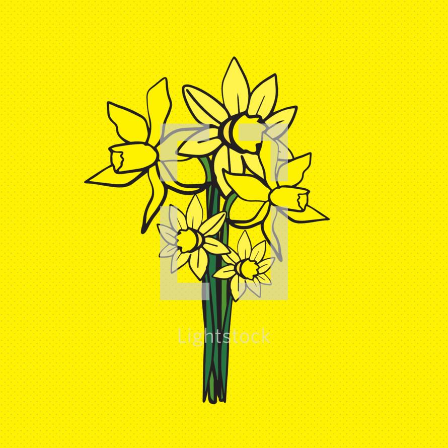 daffodil illustration