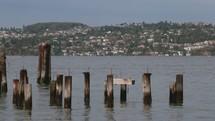 old pier pilings sticking out of a waterway