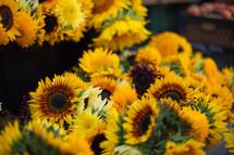 sunflowers at an outdoors flower market