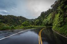 wet road through a jungle