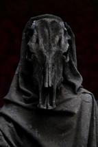 spiritual warfare - cape covered skull