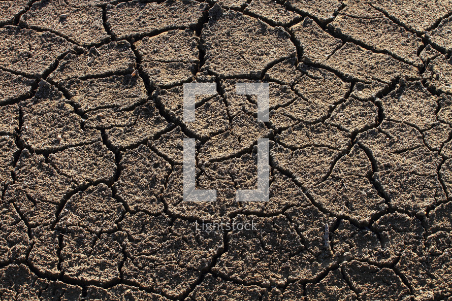 Parched ground