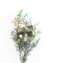sprig with flowers