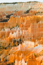 rock formations in a canyon
