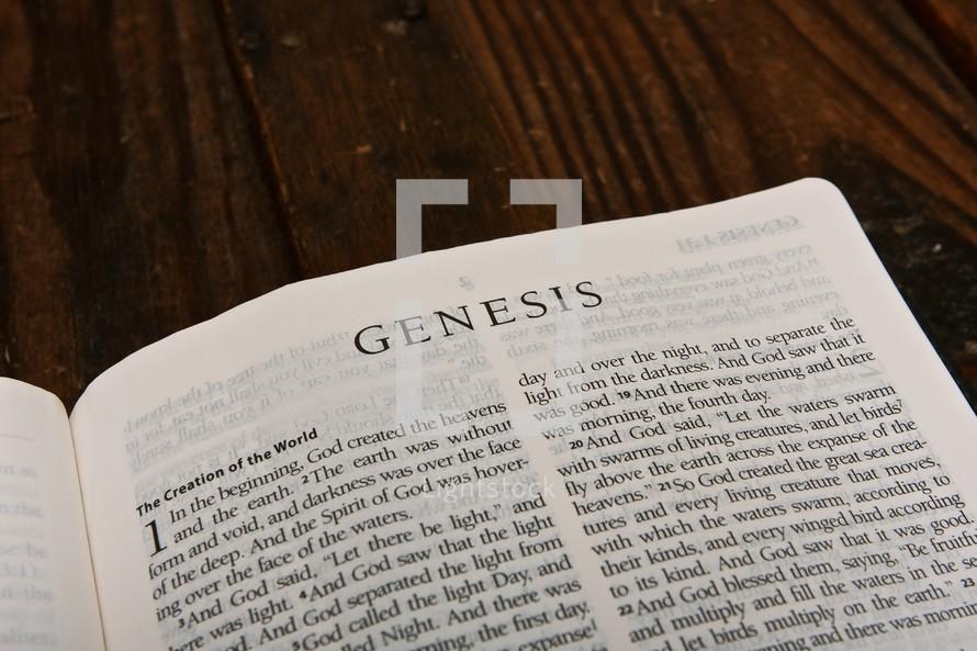 Scripture Titles - Genesis