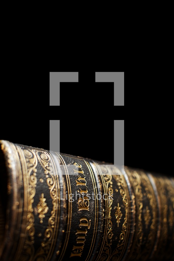 The spine of the The Holy Bible