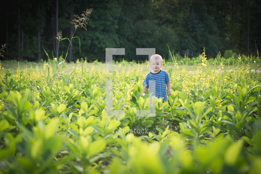 toddler boy standing in a garden