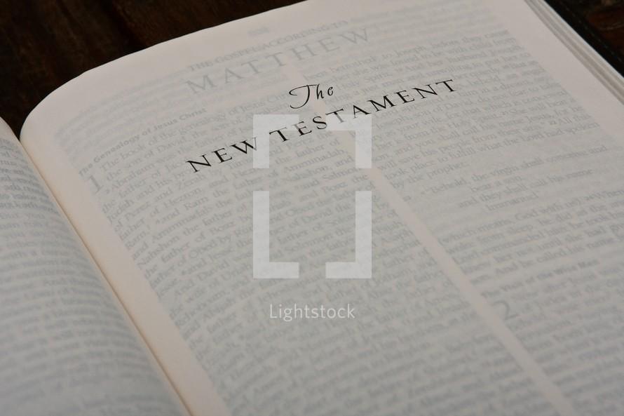 Scripture Titles - The New Testament