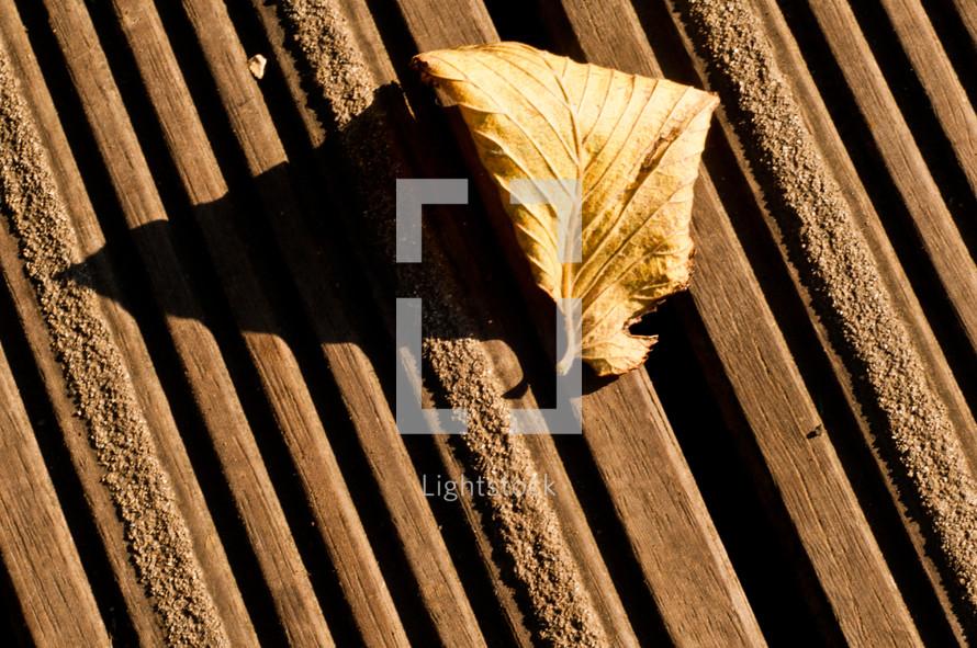 leaf on a deck
