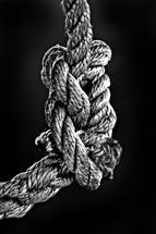 macro knot
