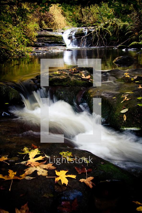 rushing waters of McDowell Creek