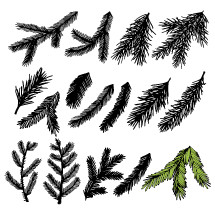 Hand-drawn Christmas trees for winter and holiday illustrations.