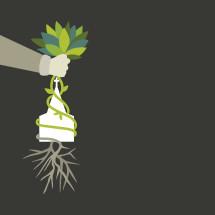 hand planting a church