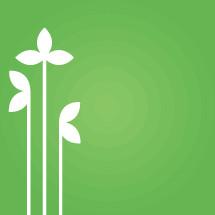 growing plants illustration.