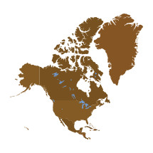 North American continent illustration.