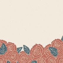 flower border of roses.