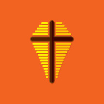 cross and shield icon