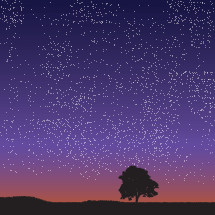 starry night sky with tree silhouette.