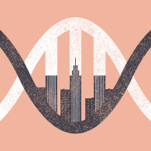 DNA of the city.