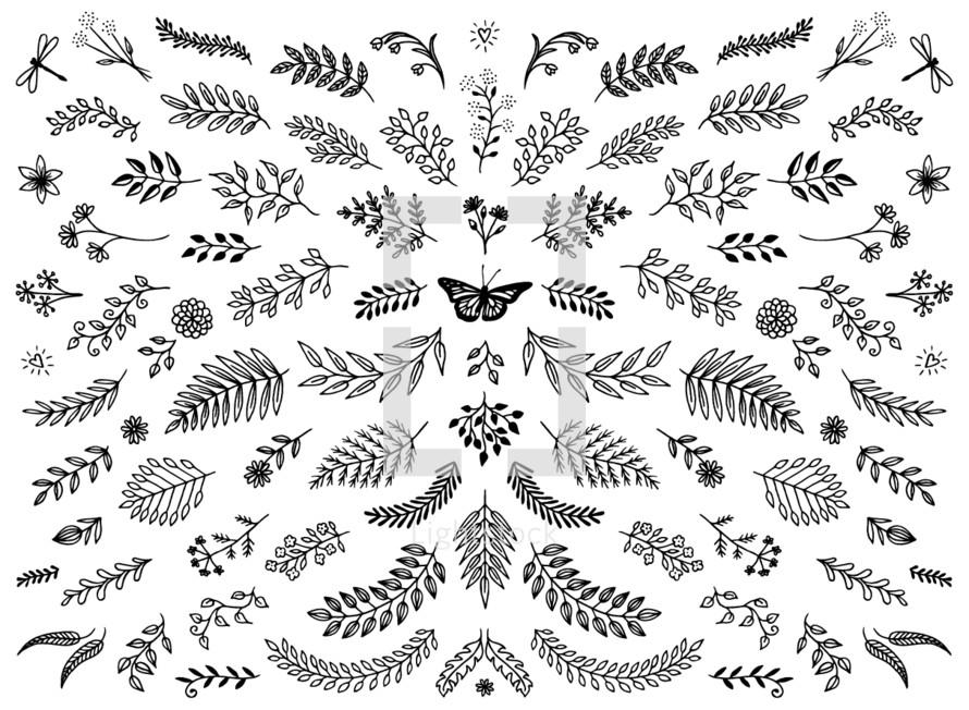 foliage and floral pattern