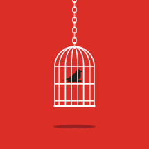 bird cage illustration.