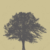 vintage tree background.