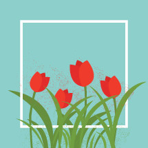 mother's day tulips in a frame.