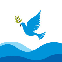 dove with olive branch over water