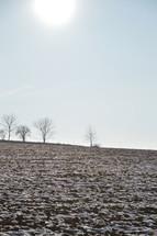Snowfields on a frozen acre in wintertime.