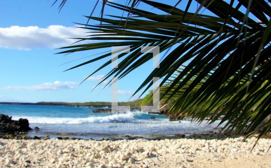 white sand beach and crashing waves in Hawaii