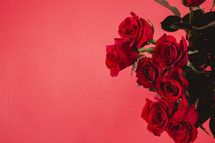 A bouquet of red roses on a red background.