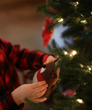 a boy child hanging an ornament on a Christmas tree