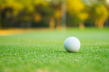 golf ball on a putting green