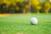 golf ball on a putting green