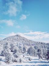 houses on a snowy mountainside