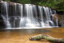 Tree-lined waterfalls.